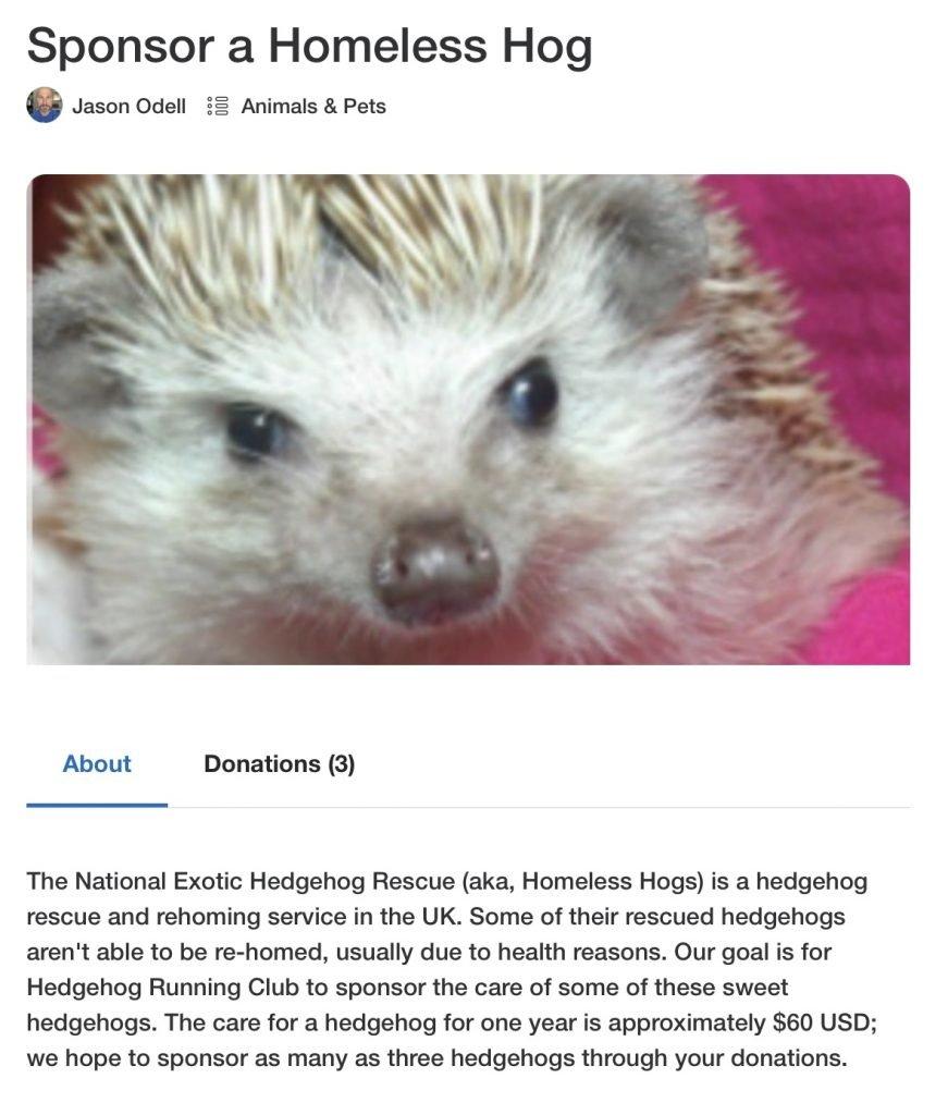 Help Us Sponsor Homeless Hogs